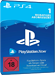 Playstation Now 1 Monat PS4 AT