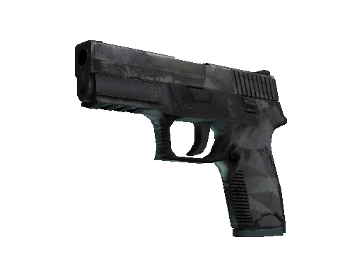 P250 | Facets (Kampfspuren)