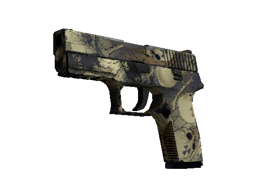 P250 | Contamination (Einsatzerprobt)
