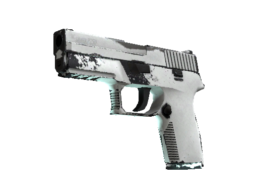 P250 | Whiteout (Einsatzerprobt)