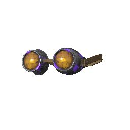 Checkered Past Goggles