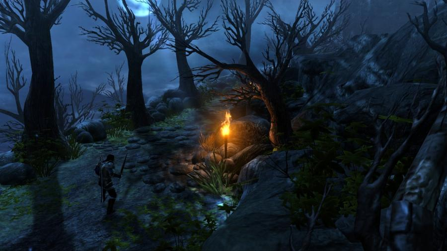 Dungeon Siege 3 Screenshot 2