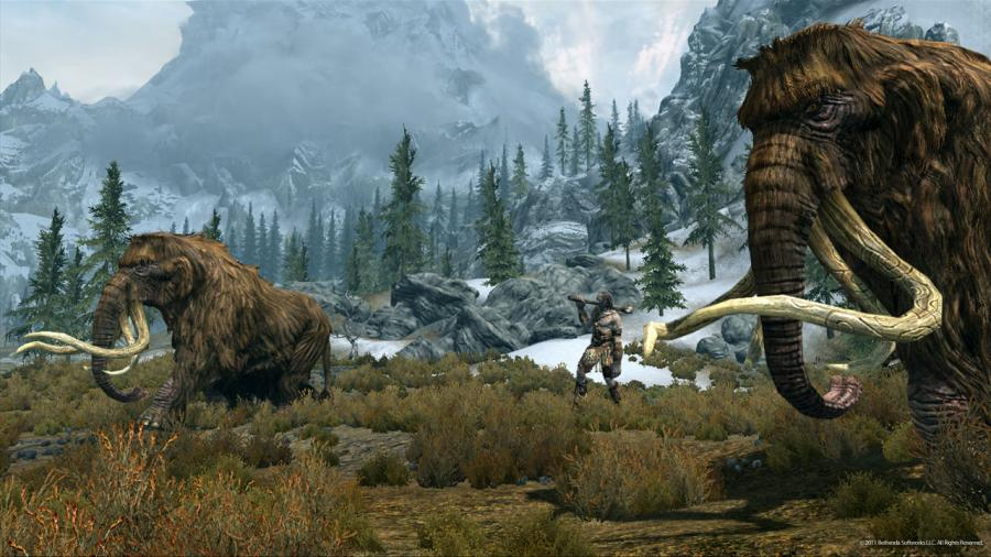 The Elder Scrolls V: Skyrim Screenshot 13