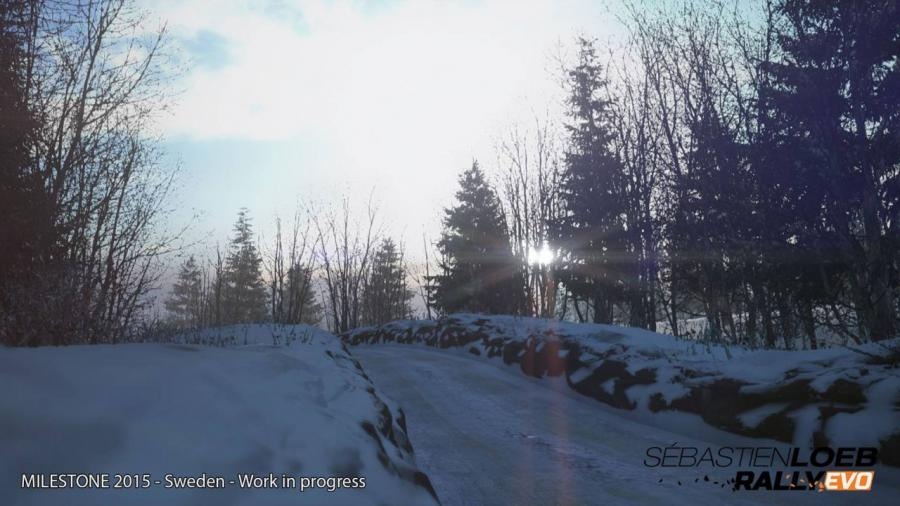 Sebastien Loeb Rally EVO Screenshot 8