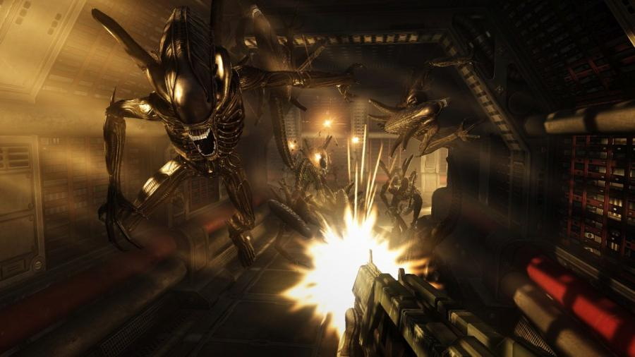 Aliens vs Predator Collection Screenshot 3