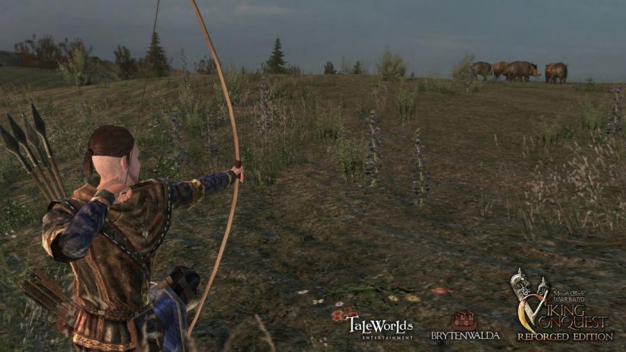 Mount & Blade Warband - Viking Conquest Reforged Edition (DLC) Screenshot 3