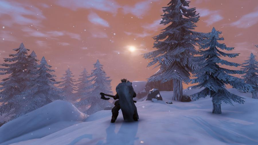 Valheim [EU Steam Altergift] Screenshot 7
